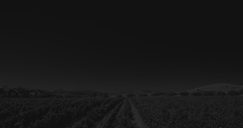 Zdjelarević osniva burzu vina u rinfuzi